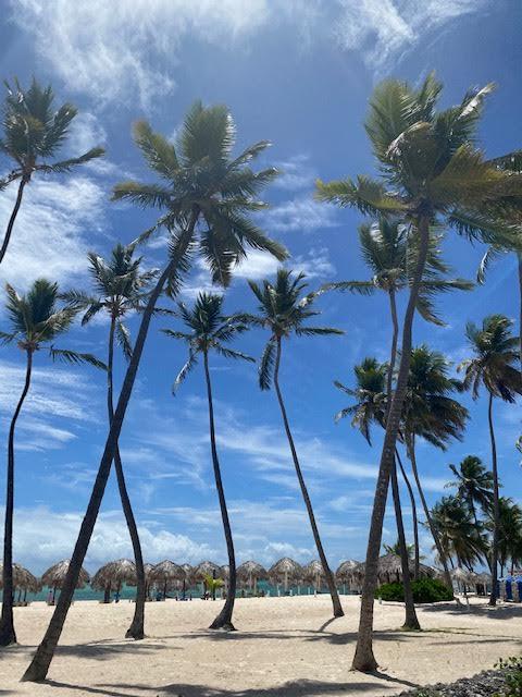 Punta Cana Private Beach